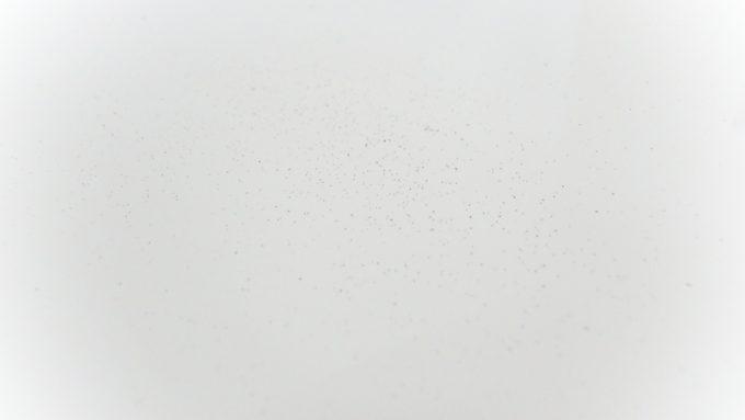 lamdash-eslv9a-higekuzu (2)
